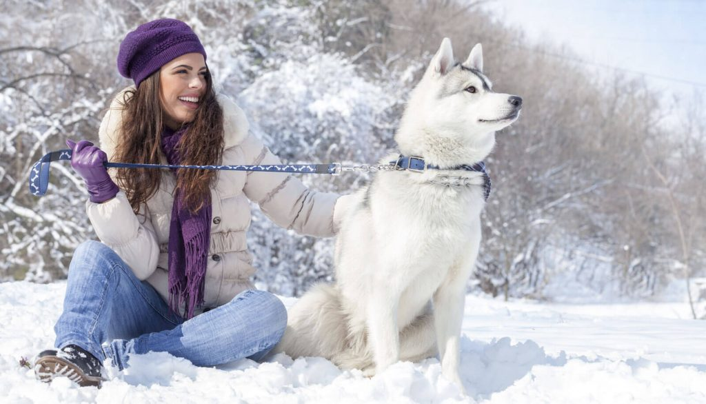 Veterinary Referral and Emergency Center - Girl with Dog in the Snow