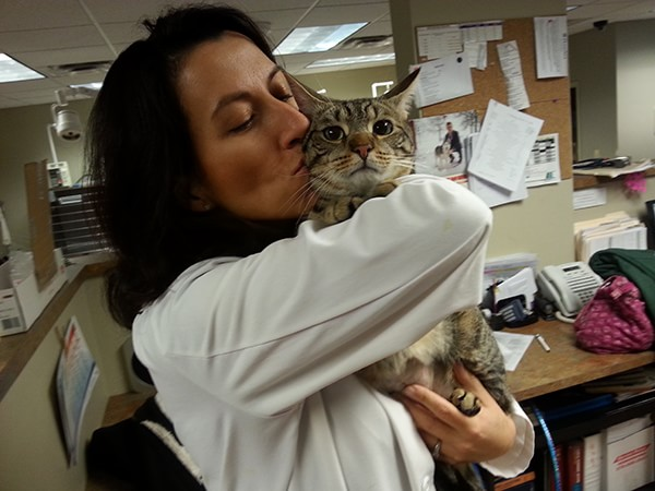 Veterinary Referral and Emergency Center - Angel Fund Success Stories - Ovi the Cat